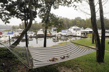The story focuses on Anne Arundel County's rezoning of several marinas across the county. Kathy Galli owns the Severna Park Yacht Ba