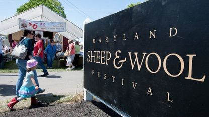There's a lot to 'baaa' about at sheep and wool festival