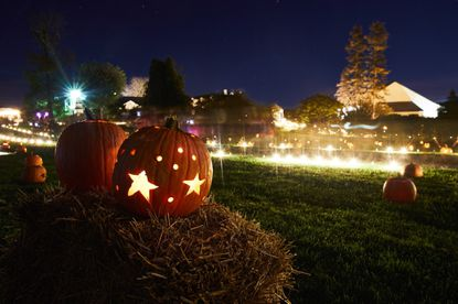 Ladew Garden Glow returns to Ladew Gardens for a second year in a row on Oct. 19 and 20 in a unique celebration of fall features illuminated sculptures, hundreds of glowing jack o' lanterns, live music and food and spirits.