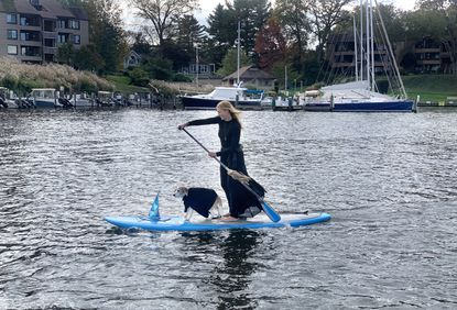A witchy paddle-boarder makes her way down Spa Creek in Annapolis on Halloween, complete with her equally waterborne familiar.