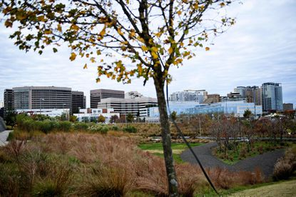 A view of the Crystal City area in Arlington, Virginia where Amazon has decided to locate half of its planned HQ2.