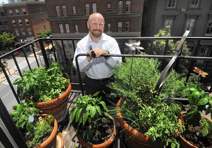 Steve Kelly grows veggies and herbs on his fire escape