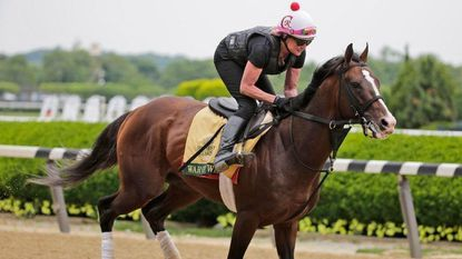 How to bet the 2019 Belmont Stakes: Liam Durbin handicaps