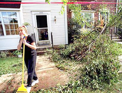 Mostly unharmed: Robin Wilkinson, 33, a software trainer, cleans up debris from fallen trees outside her home in the Settler's Landing area of North Laurel. About half of the 47 townhouses there were condemned.