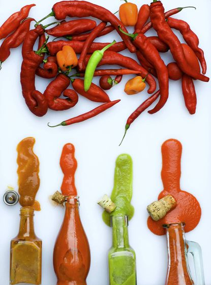 Hot sauce can be made in inifinite flavor and heat levels by tweaking what peppers you use.