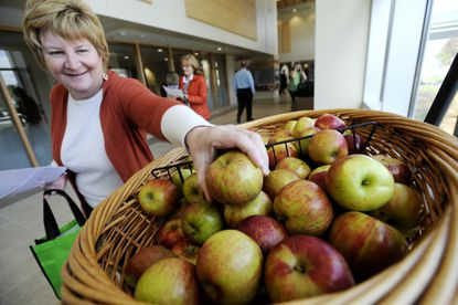 Anne Capriolo of Westminster picks up an apple on her way into the 5th Annual Total Health Expo & Community Open House at Carroll Hospital Center in Westminster Sunday, October 5, 2014.