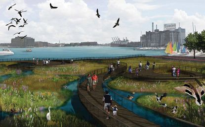 Large harbor floating wetland project stirs debate