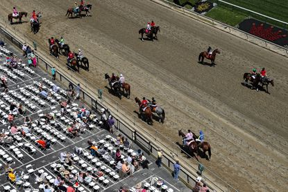 Horses are paraded around before a race a day prior to the 141st running of the Preakness Stakes at Pimlico Race Course on on May 20, 2016 in Baltimore, Maryland.