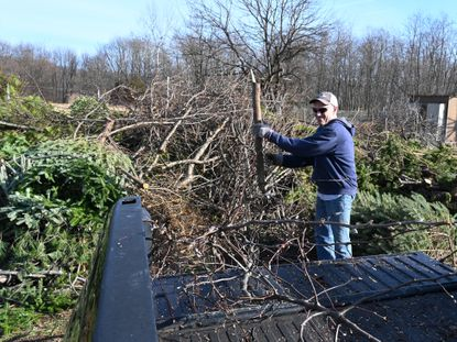 Tim Horst of Bel Air takes advantage of last Saturday's springlike weather to get some yard work done as he deposits some tree branches among the Christmas Trees and other brush at the Tollgate yard waste facility in Bel Air Saturday afternoon.