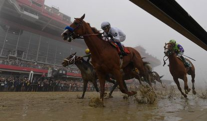 The 144th Preakness is set for May 18.