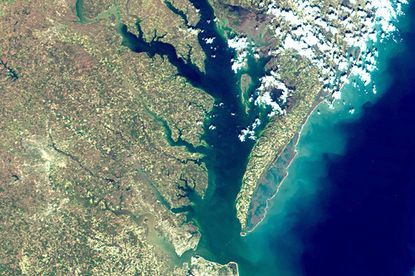 This image, captured by satellite, shows the Chesapeake Bay.