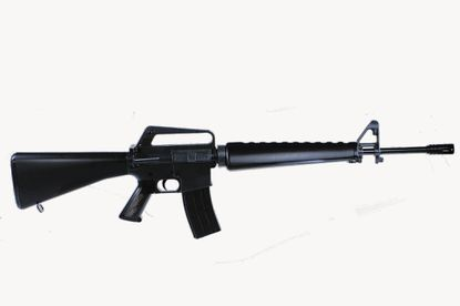 M16 rifles similar to the one in this stock image are among the items issued to police agencies with a presence in Carroll County through the Defense Logistics Agency's Law Enforcement Support Office.