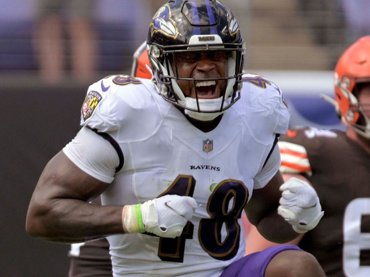 From Patrick Queen to Kristian Welch, here's how the Ravens' rookies have fared through Week 6