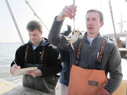 Biologist Chris Walstrum (left) logs statistics while biologist Joe Williams weighs a crab.