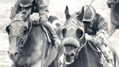This week in Baltimore sports history (May 19-25): Maryland-bred Bee Bee Bee pulls off Preakness stunner