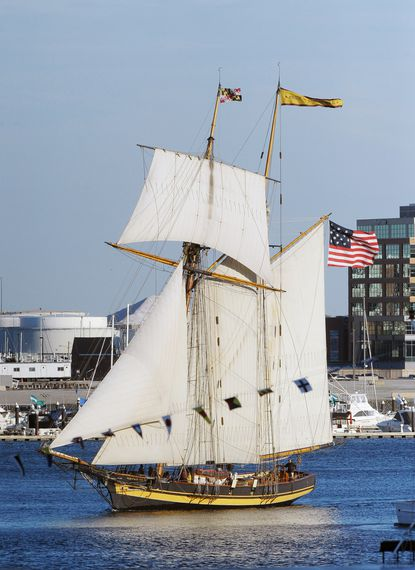 The Pride of Baltimore returned to it's home port of Baltimore after a 5-month sail in the Great Lakes and Canada.