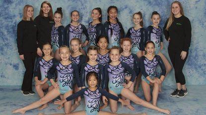 Carroll Gymnastics Level 4 team, state championships