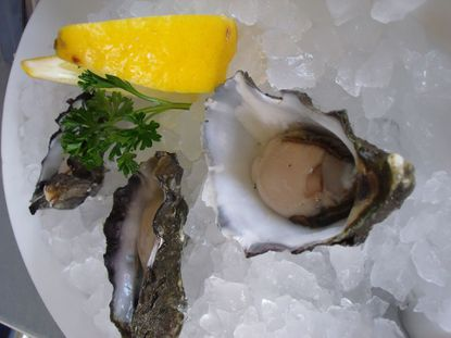 It's National Oyster Day. Save oysters by eating oysters, apparently