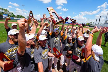 Members of Salisbury celebrate a win against St. Thomas during the Division III Men's Baseball Championship held at Perfect Game Field at Veterans Memorial Stadium on June 8, 2021 in Cedar Rapids, Iowa. (Photo by Jack Dempsey/NCAA Photos via Getty Images)