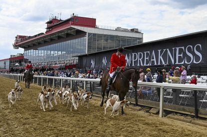 Robert Taylor of the Goshen Hunt Club leads the hounds down the track at Pimlico.