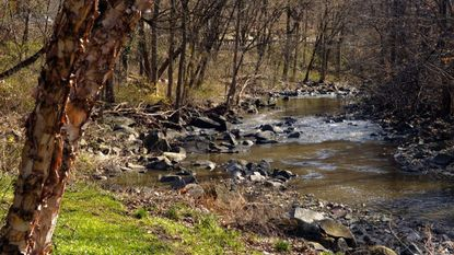 The county plans to rebuild a pedestrian bridge over Dead Run stream that allows access from Dogwood Road to Woodlawn High and nearby Woodlawn Library. The bridge was taken down in 2014 due to deterioration. This 2008 file photo shows the stream's path through Franklintown.