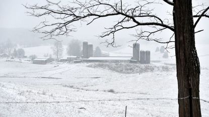Snow, ice and dangerous cold temperatures forced Harford County Public Schools to close for two days, halting the high school sports schedule for many.