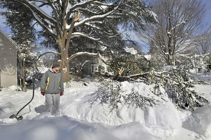 Rick Weikel walks by a fir tree that lost two large branches because of heavy snow in front of his family's home in the 300 block of Broxton Road in Homeland. Across the area, branches, and whole trees, were victims to the snowstorm.