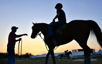 From Tuesday to Friday, you can enjoy sunrise at Pimlico and maybe see the horses training.