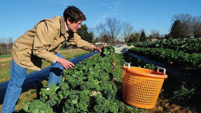 Harman's Farm Market Run by Husband and Wife Team