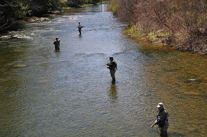 Four members of Patapsco-Patuxent Trout Unlimited fish the Casselman River.