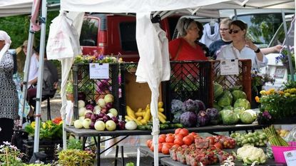 South Carroll: Farmers market in Sykesville promotes healthy lifestyle