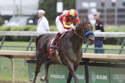 FILE - In this May 3, 2019, file photo, McKinzie, ridden by jockey Mike Smith, wins the Grade 2 Alysheba horse race at Churchill Downs in Louisville, Ky. The Breeders' Cup Classic pits West Coast star McKinzie against Code of Honor, the East's top horse who finished second in the Kentucky Derby. (AP Photo/Gregory Payan, File)