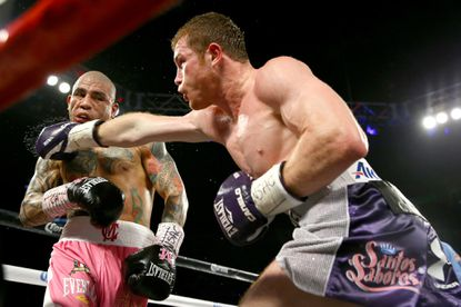 'Canelo' Alvarez throws a right at Miguel Cotto during their Nov. 21 middleweight title bout in Las Vegas.