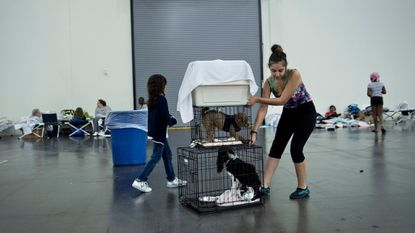Flood victims move crates with pets at a shelter in the George R. Brown Convention Center during the aftermath of Hurricane Harvey on August 28, 2017 in Houston, Texas.