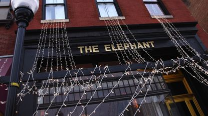 The Elephant announces that it will remain open, even after filing for bankruptcy