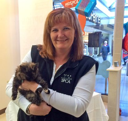 Katie Flory, volunteer manager and Bobbi the kitten at the opening of the new pet adoption center at White Marsh Mall