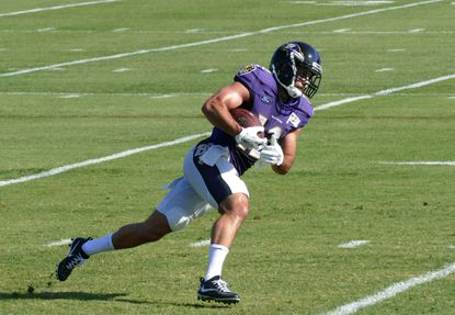 Michael Campanaro, Tim Williams active for Ravens' home opener vs. the Browns Sunday
