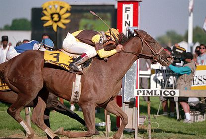 "Winner of Preakness, ""Prarie Bayou"" crossing finish line."