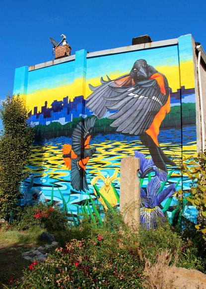 New mural lifts a community's spirits – and increases awareness of Harris Creek watershed