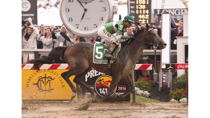 The Undercard: In the Shadow of American Pharoah
