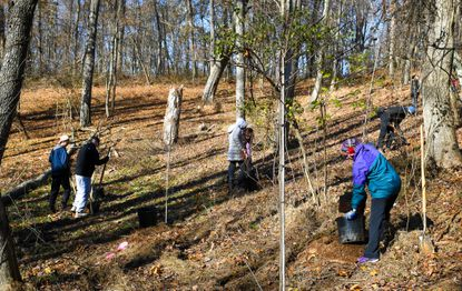 Lauren Bonnet, right, of Columbia, plants a tree with other volunteers during the Family Volunteer Day at West Friendship Park.