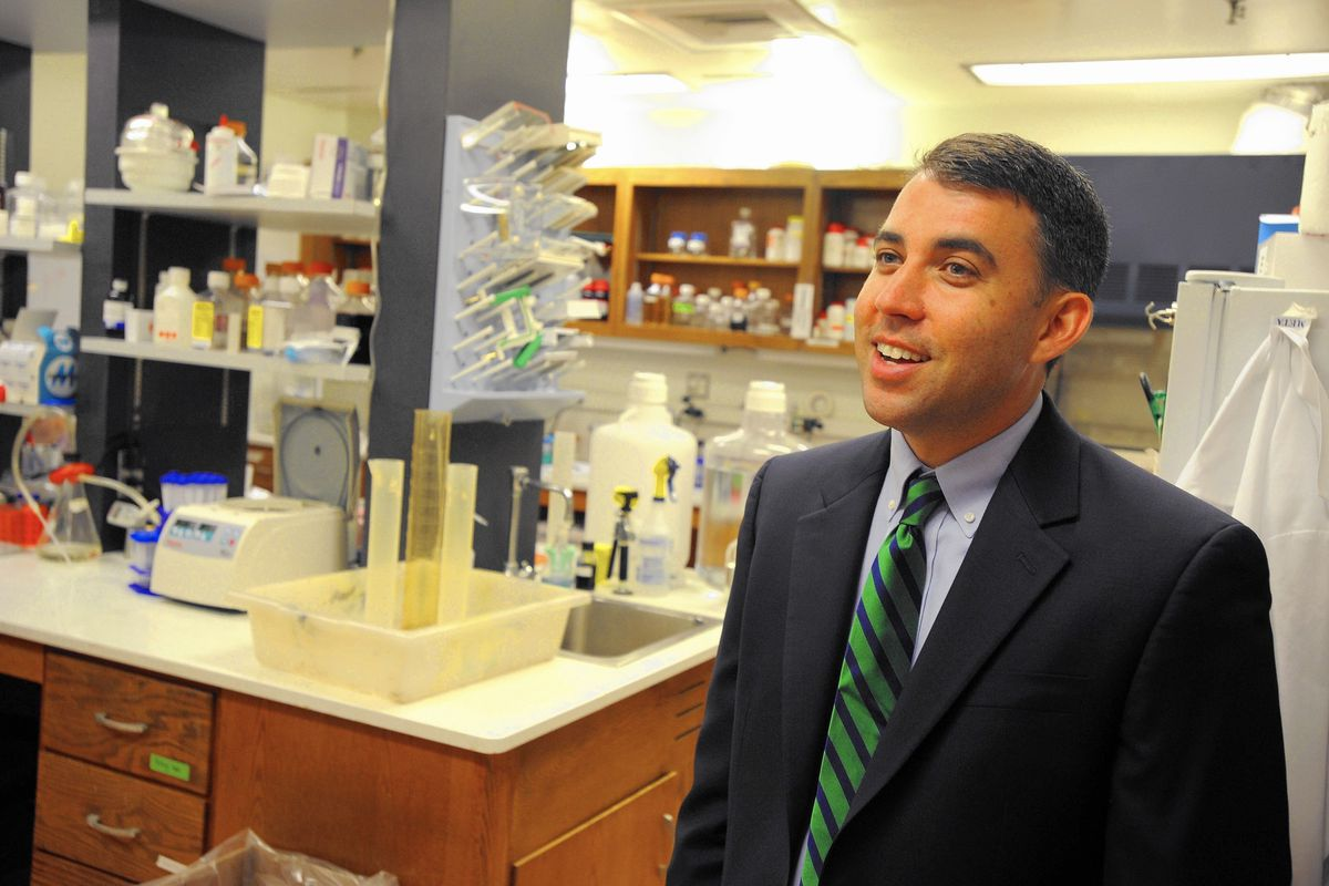 Researchers make progress in treatments for MERS, SARS - Baltimore Sun