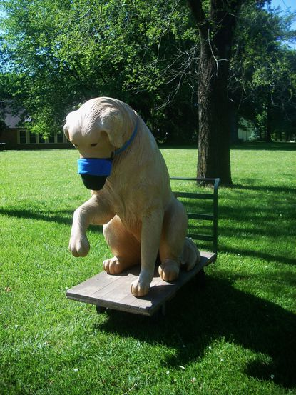 Big Brown, the over-sized golden retriever statue, greets passers by along Triadelphia Road in West Friendship.