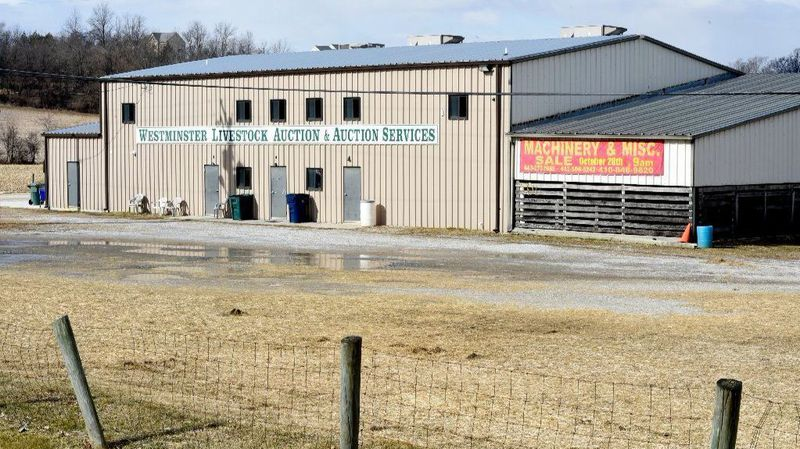Westminster Livestock Auction closed 'for good,' according