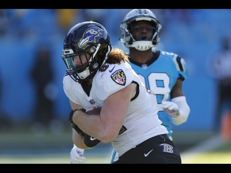 detailed look 69d70 5e49d Panthers 36, Ravens 21: Hayden Hurst scores his first career ...