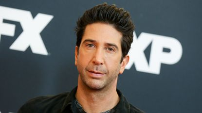 British police's search for David Schwimmer 'lookalike' creates social media frenzy
