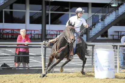Ex-racehorses show off new career training at Pimlico event