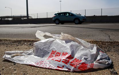 "Mayor Bernard C. ""Jack"" Young and City Council President Brandon Scott both are in favor of a ban on all plastic bags at Baltimore stores, not the partial ban backed by a City Council committee this week."