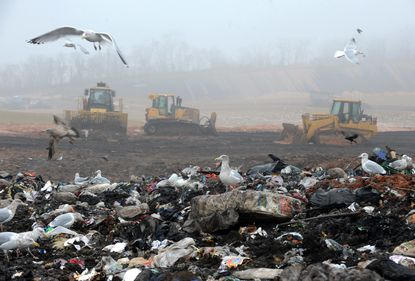 Gulls have their fill at the Quarantine Road landfill. Five Baltimore public works employees have been charged in U.S. District Court for allegedly taking bribes and stealing scrap metal at city landfills.