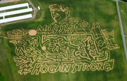 Lawyer's Winterbrook Farmin Thurmont paid tribute to Gov. Larry Hogan with its corn maze in 2015.